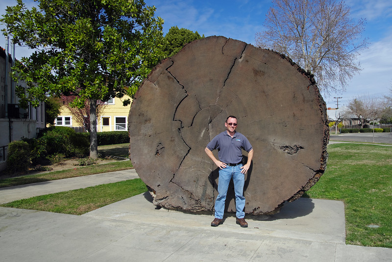 How I stack-up next to the Big Wood