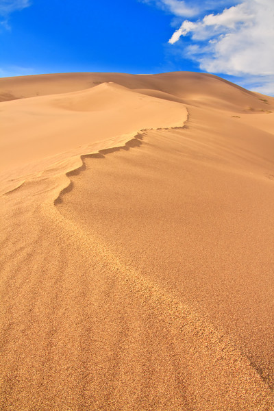 Great Sand Dune 3