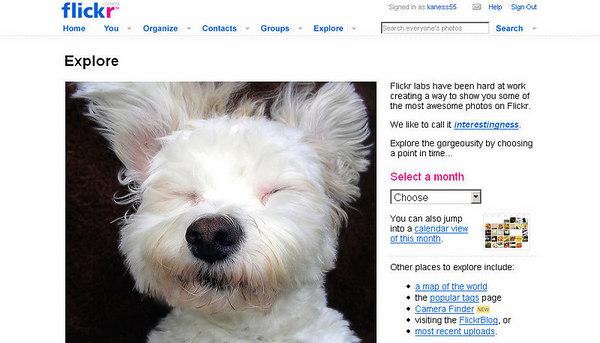 //www.flickr.com Comunity con un enorme database, iscrizione gratuita con limite di 20 mega mensili per utenti free, possibilità di aderire a gruppi con relativi forum e molte altre utilità