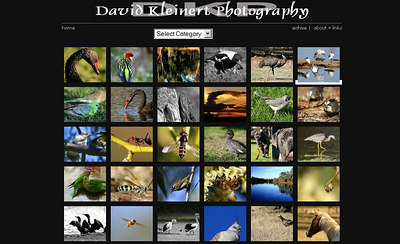 //davidkphotography.com  Photoblog di David Kleinert, in cui predomina la fotografia naturalistica