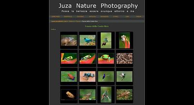 //www.juzaphoto.com Sito di un giovane fotografo naturalista professionista, con gallerie, articoli, recensioni, tutorial, ecc.  Un settore del sito -  JuzaPhoto Magazine -  è una rivista online  aperta ai contributi di professionisti e fotoamatori esperti, che possono raccontare le loro esperienze di viaggio e di esplorazione della natura