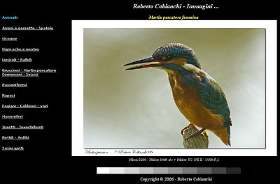 //www.robertocobianchi.net sito di un fotoamatore specializzato in riprese naturalistiche - di particolare bellezza le immagini di gruccioni, aironi, garzette