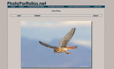http://www.photoportfolios.net in lingua inglese, raccoglie belle gallerie fotografiche collegate al sito  http://www.naturephotographers.net, che ospita anche articoli e forum sull'argomento
