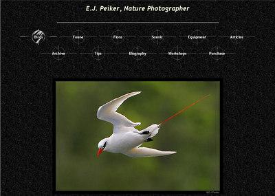 //www.ejphoto.com Sito di un fotografo professionista bavarese specializzato in fotografia naturalistica