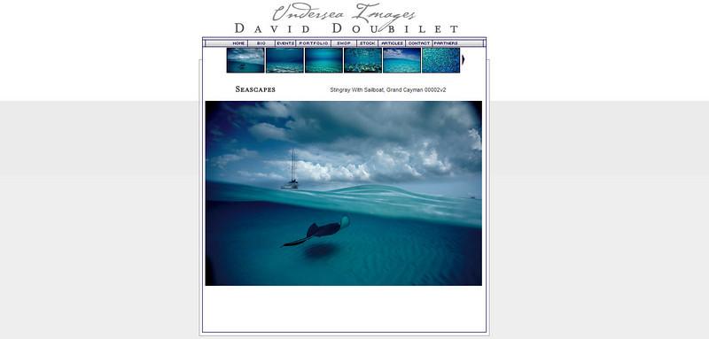 //www.daviddoubilet.com
