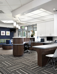 Kai Orthodontics, Campbell. Front Desk. Sullivan Design Studio.
