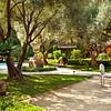 Private Residence, Courtyard. Saint Helena, CA. Daniel DerVartanian, Engel & Volkers.