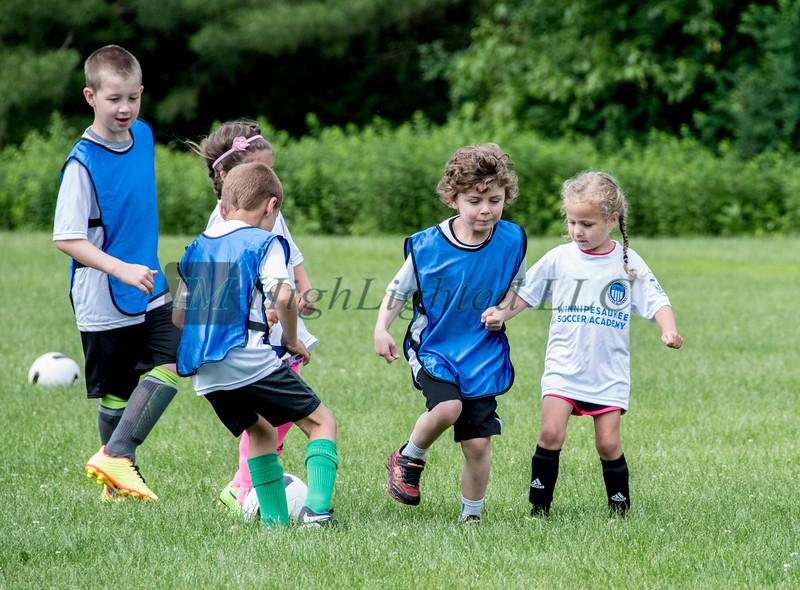 Little D Soccer (10 of 73)
