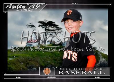 Little League Baseball-1