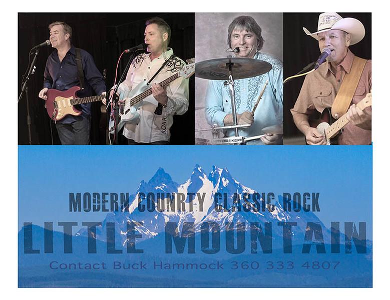 Little mountain promo 2 web test