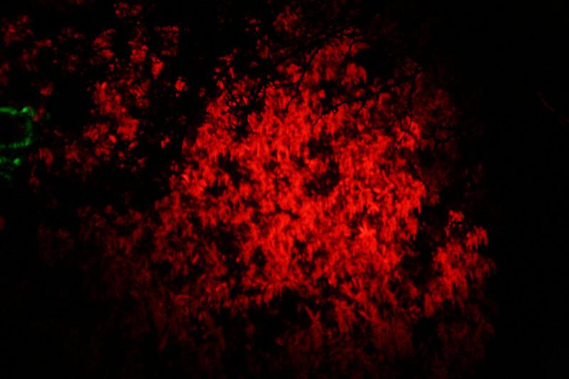 Illuminated Red-Ness