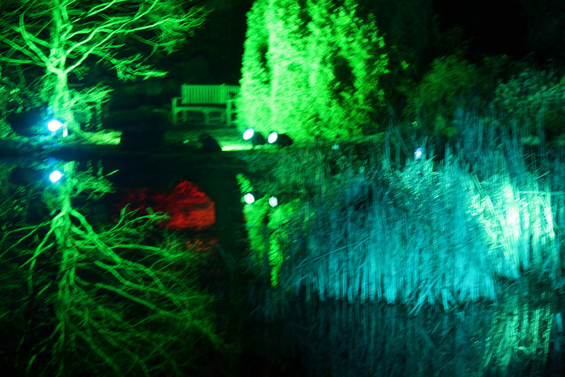 Illuminated Lake final- Ness