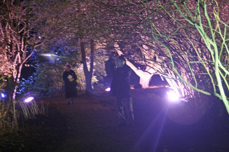 Walking through the illumination-Ness