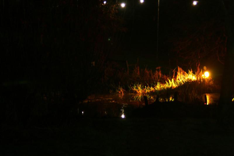 Lakeside illumination -Ness