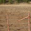 USFS Feedlot-Juniper Flat<br /> W-W NF, Hwy 7, Baker County, OR<br /> Sec 19 T10S R37W    ; UTM 11T 0402924E 4947615N 4500' <br /> October 9, 2008    <br /> DSCN5606