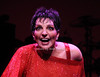 Liza Minnelli<br /> photo by Rob Rich © 2008 robwayne1@aol.com 516-676-3939