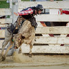 Cowtown Rodeo 2015 in NJ.