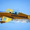 New Garden Festival of Flight Air Show 2015