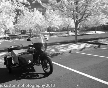 local parks on the ural(bunch of infrared)