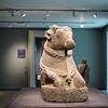 British Museum 014