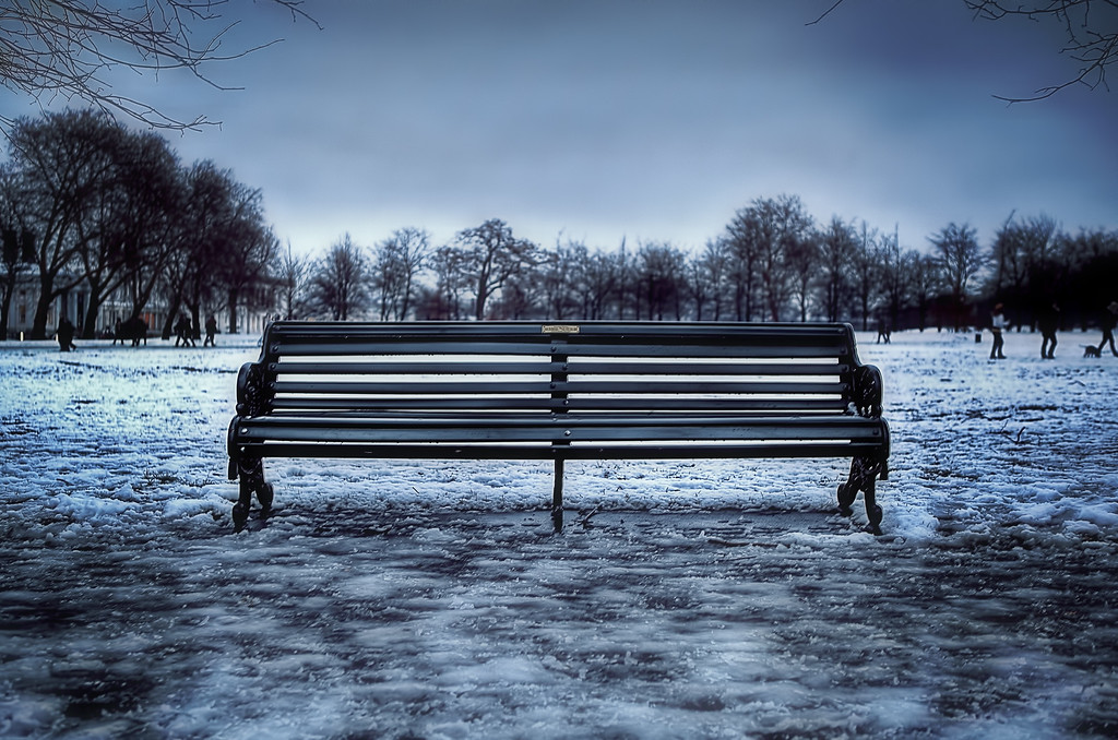 Snow Seat
