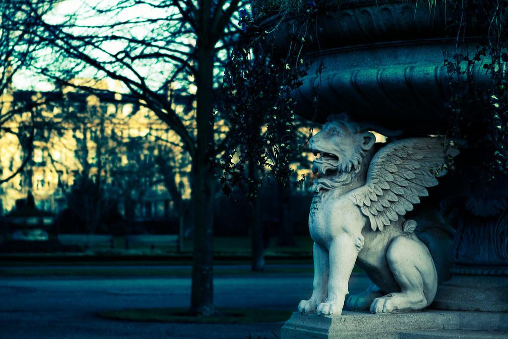 Lion Tazza