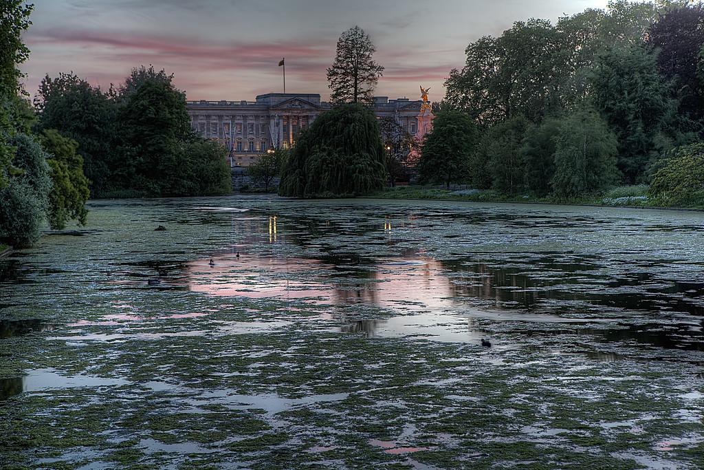 Palace pond