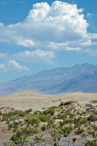 Sand dunes outside of Stovepipe Wells, Death Valley, Ca.