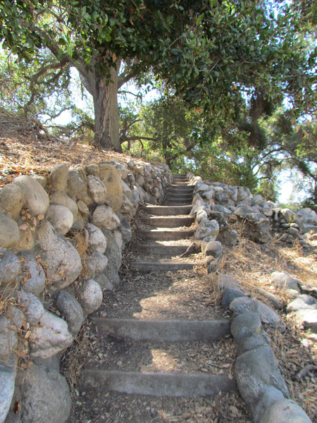 """Steps going up the arroyo to the corner of San Rafael Avenue.  Here's a quote about where the steps go:<br /> <br /> The stairs may be remnants of some old Pasadena history: The arroyo and hillsides just north of here were once home to the grand beer magnate Adolphus Busch, and the first Busch Gardens. This was an elaborate wonderland of fountains, streams and glades, designed in 1905 and, though privately owned, open to the public. The gardens were not the theme-park scale efforts that followed in later years, but they were lush enough to double for Sherwood Forest in the Errol Flynn action film """"The Adventures of Robin Hood"""" in 1938 — the same year the gardens were closed."""