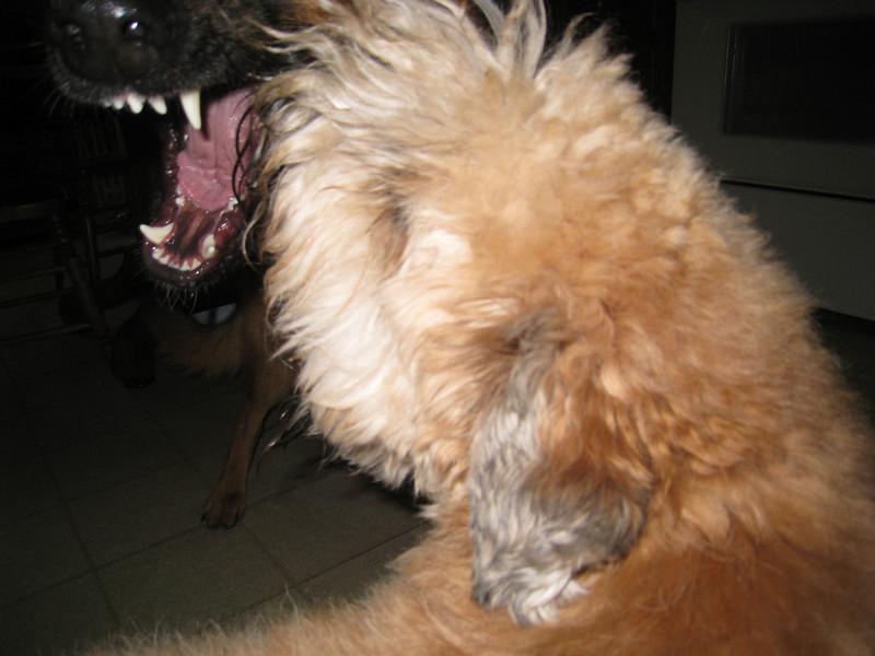 So vicious!