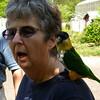 Let's speak beak!
