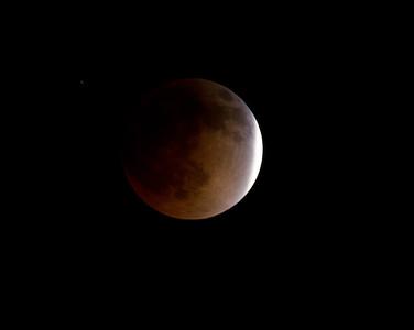 Lunar Eclipse 2014 04 15 Leucadia-1.CR2