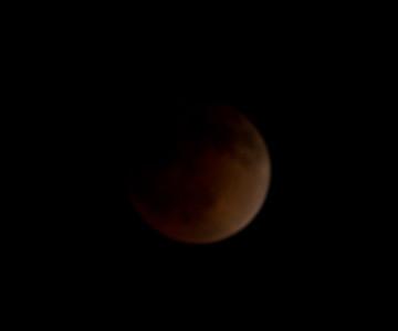 Lunar Eclipse 2014 04 15 Leucadia-6.CR2