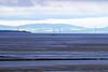 IMG_7068 Estuary SM