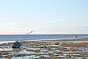 IMG_0242 Estuary SM