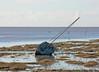 IMG_0241 Estuary SM