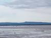 IMG_7050 Estuary SM
