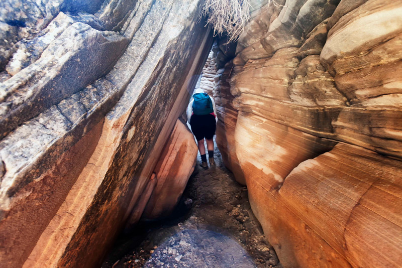 Lick Wash Slot Canyon<br /> Grand Staircase Escalante National Monument<br /> Utah