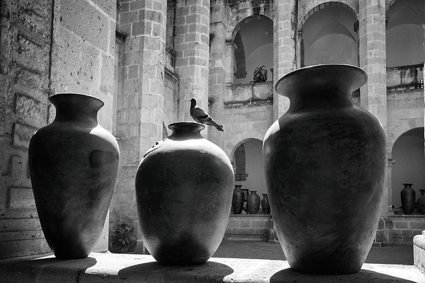 Three Urns and a Pigeon No.1