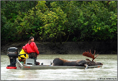 """THE LAST RITES"", Stikine river, Alaska, USA."
