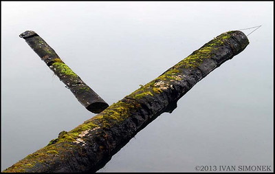 """Y"",floating logs,Wrangell,Alaska,USA."