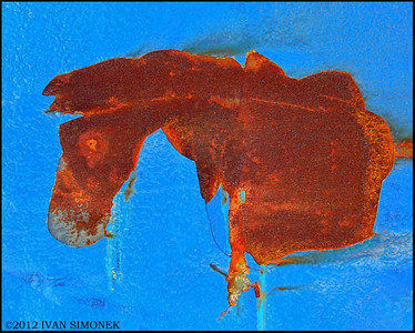 """RUSTY SPOT"" looking like a horse.A fishing boat hull,Wrangell,Alaska,USA."