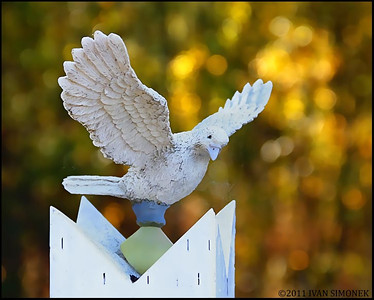 """DOVE"",Telegraph Creek cemetery,B.C.,Canada."