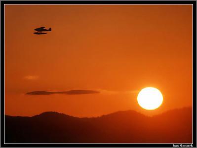 """LIKE A MOSQUITO"",a float plane heading home."