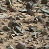 0844MR0037530400500992E01_DXXX-stromatolite; grooved rocks-cropped-autoEQ;