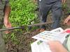 Participants compare soil characteristics to a chart of wetland soils.
