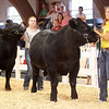 Stephanie Morris competes in the Supreme Showman competition.