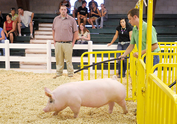 Daren Martin competes in the Supreme Showman competition. Other 4-Hers volunteer their animals and 4-H provides identical tools to the contestants to ensure no one has an advantage.