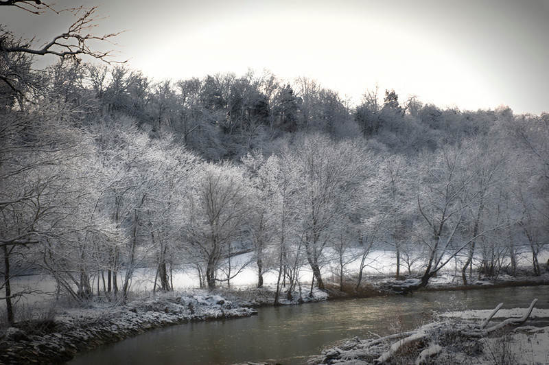 Late winter at Muddy Creek
