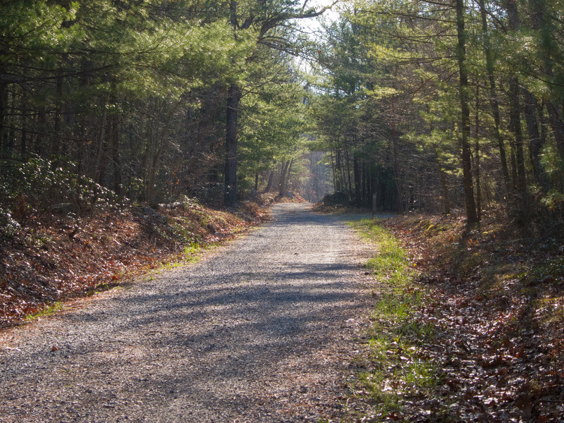 Madison Run Fire Road, Shenandoah National Park